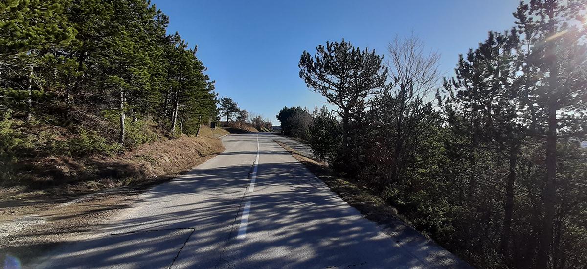 Idee S1 Radweg